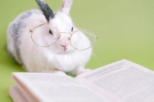 Húsvéti könyvnyereményjáték / Velikonoční soutěž o knižní ceny knih